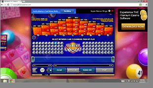 Online Bingo Instant Play