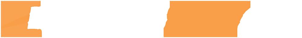 BS Logo